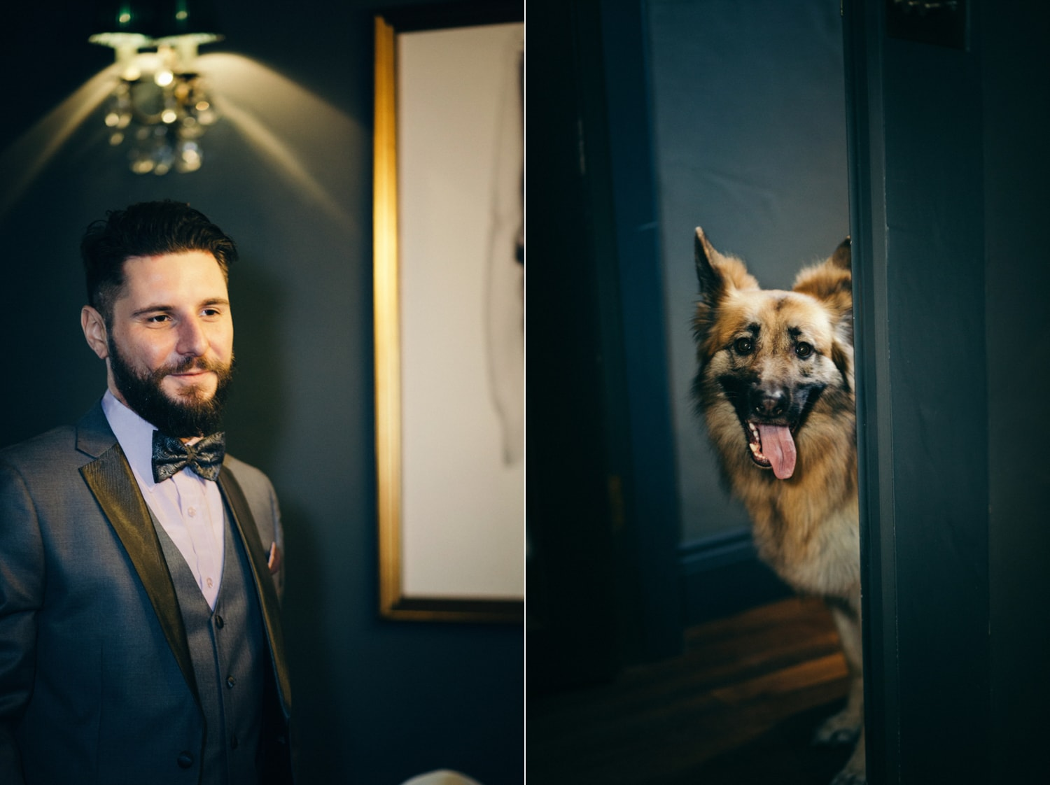 Le Petit Chateau, dog at wedding