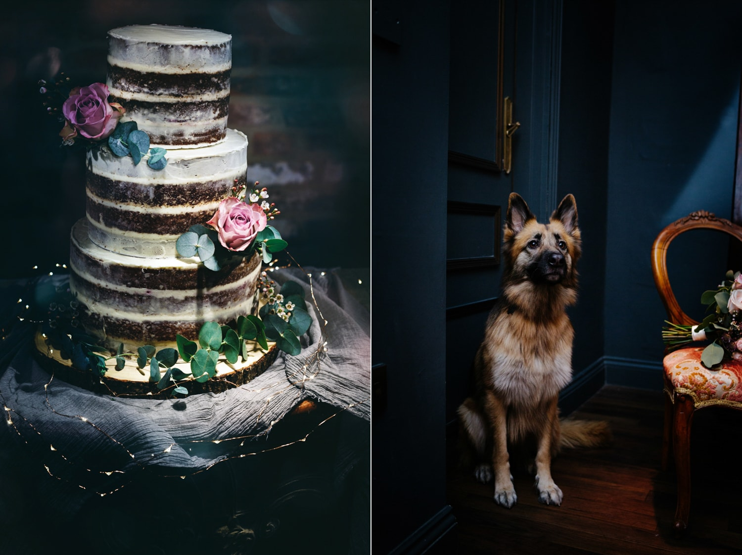 Le Petit Chateau, wedding with dog